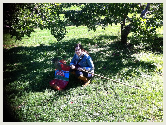 apple picking 2010